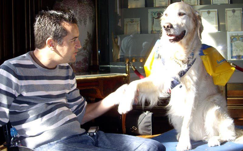 Éduc'nat et chien d'assistance ne font pas bon ménage…