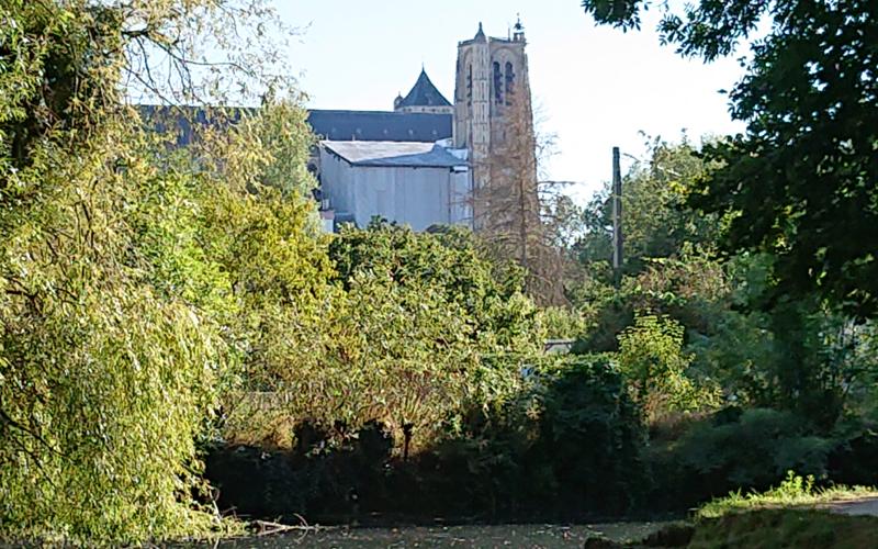 Cathédrale de Bourges depuis les marais