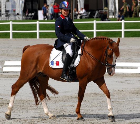 L'équitation selon Céline Gerny
