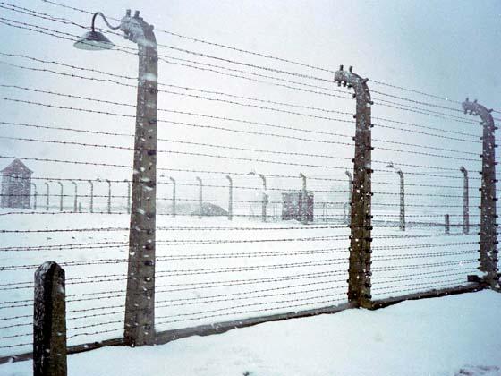 Neige et barbelés à Auschwitz.