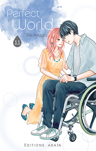 Couverture de Perfect World 11