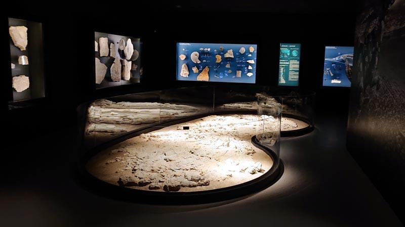 Sol fossilisé au musée de Lodève