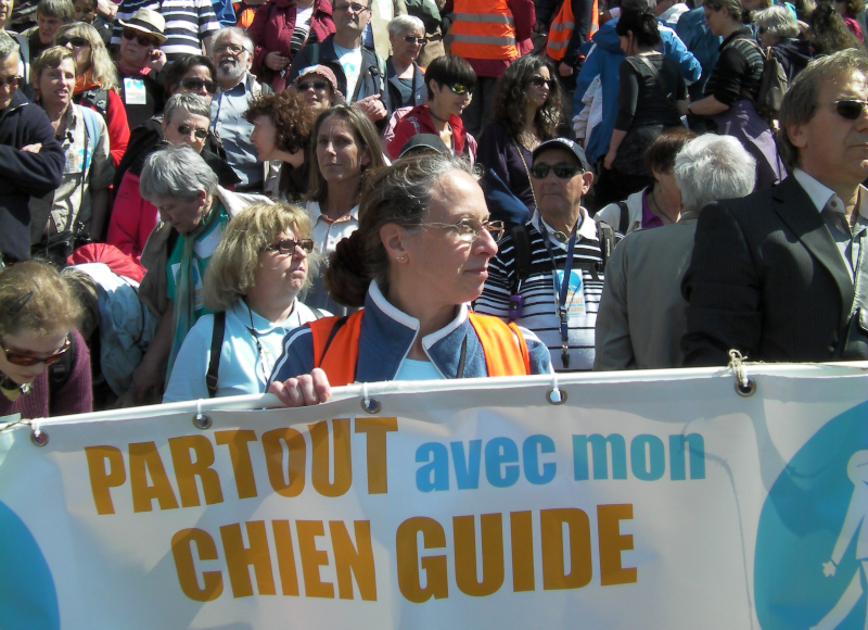 Manifestation chiens-guides Opéra Bastille escalier 5