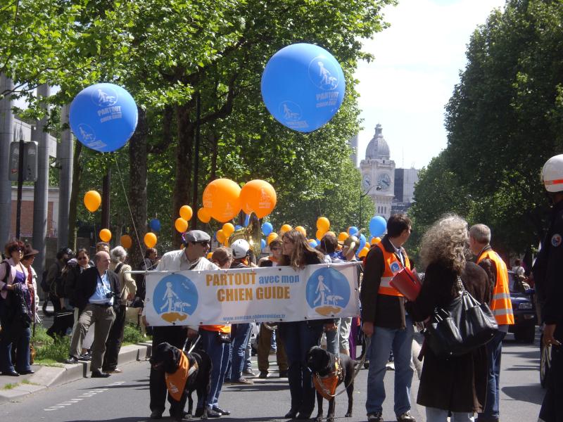 Manifestation de maitres de chiens-guides à Paris le 12 mai 2012